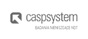 Casp System NDT